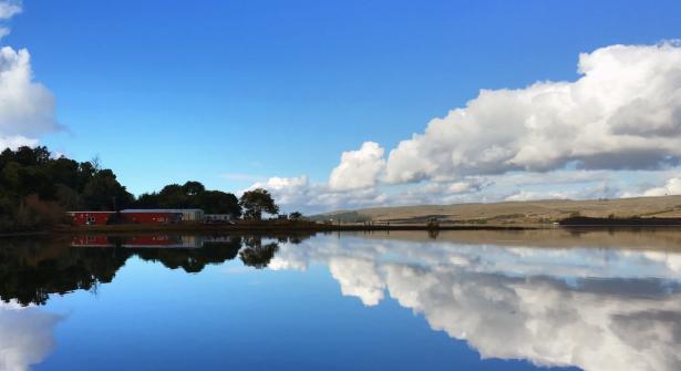 Tomales Bay, Inverness, California Photo: Paul Korhummel