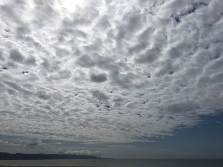 Drakes Bay, California. Photo: PK Read