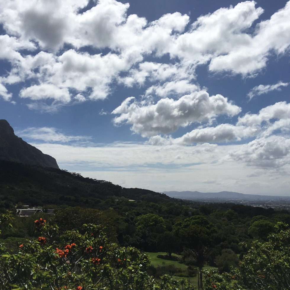 cheerful blue skies, Table Mountain view, Cape Town.